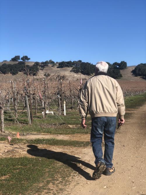 Louis Lucas walking in the vineyard