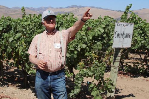 Louis Lucas pointing in the vineyard