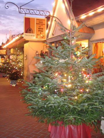 The Toccata Tasting Room storefront at the holidays with a Christmas Tree