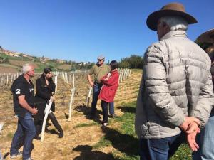 Louis Lucas checks out the vineyards of the Rhone