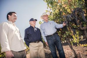 Mike and Royce Lewellen with Louis Lucas in the vineyard