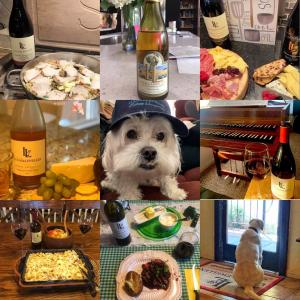 A collage of images of dogs and wine shared by Lucas & Lewellen wine fans