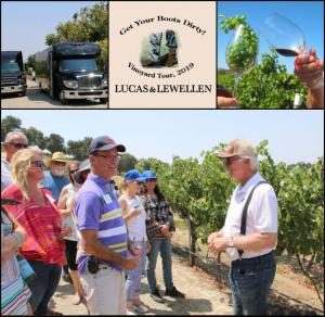 Vineyard Tour 2019
