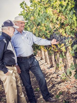 Royce Lewellen and Louis Lucas checking out grapevines